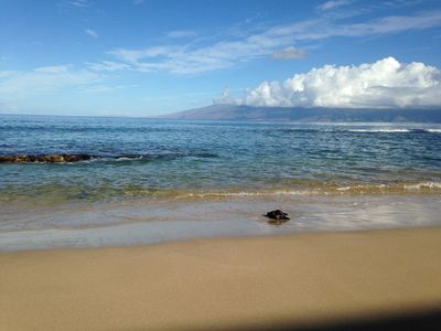 Photo for Hale Kai #120 - Your Home by the Sea in West Maui