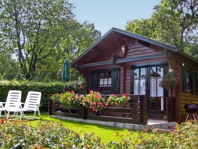 Photo for Cottage with terrace and garden