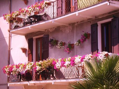 "Photo for CHARMING GLICINE HOUSE AT GRIANTE - CLOSE TO "" LA VECCHIA TORRE BAR PIZZERIA"""