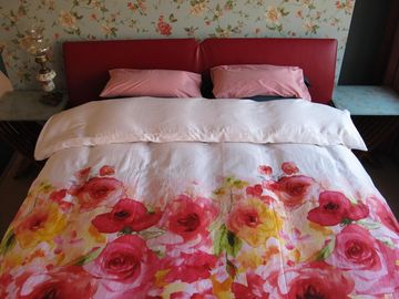 Wild Roses, an attractive B & B with sunny roof terrace near canals and Jordan.