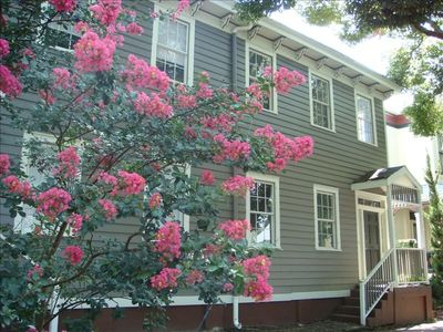 The Mimosa House - 1890 Townhouse Near Forsyth - Great Value!