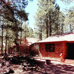 Photo for Pinetop Cabin - quiet retreat