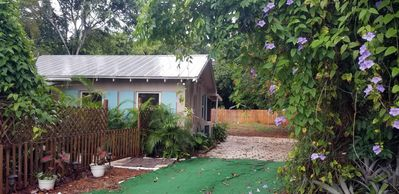 Photo for Jungle House Cottage, Dogs welcome.  Private, quiet, and  exclusivity yours.