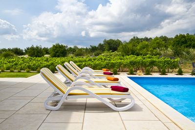 Loungers and pool towels provided, pool maintained with optimal chemical levels