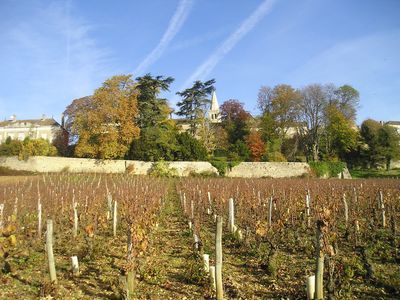 Photo for True Burgundy on your doorstep