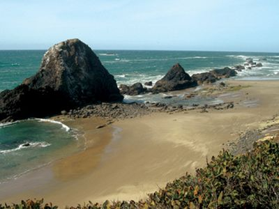 Photo for Tide pools, wide sandy beaches, whale watching!