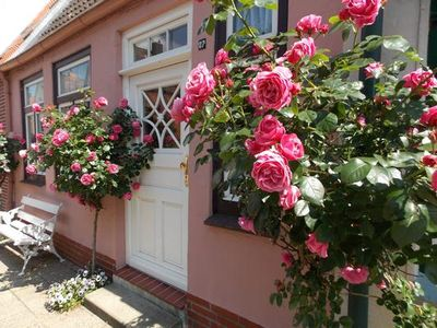 Photo for Rental Friedrichstadt for 2 persons with 1 bedroom - Holiday home