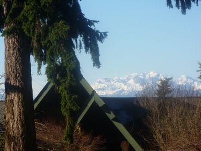 Pacific Willow Lodge and the Olympic Mountains