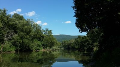 View of the Cacapon River in the summer from the cabin.