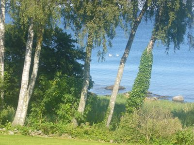 Photo for Holiday house with stunning views of the sea and a large garden directly on the Baltic Sea