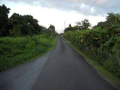 Our quiet private road, Enoka Place, looking toward the ocean from the house.
