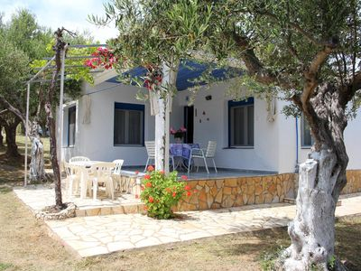 Photo for Very beautiful located holiday house at the sea, large garden | Messenia, Pelopo
