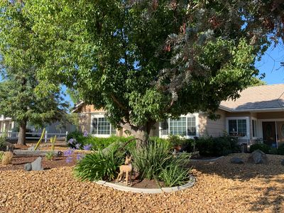 Photo for Ranch Estate Secluded and close to all amenities!