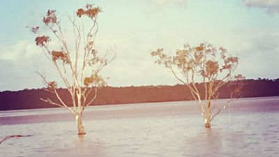 Photo for Tamboritha by the lake