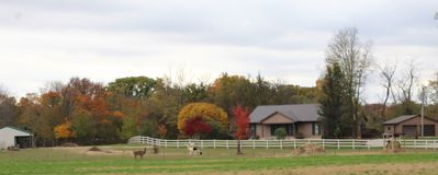 Welcome to the farm retreat.  Fall is the most beautiful time of year.