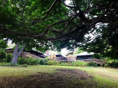 Photo for Kapa'au guest house conveniently located near shops in relaxing neighborhood.