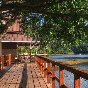 Photo for Cabin with Incredible Sunset Views of Halibut Cove