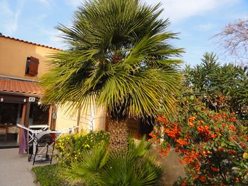 Villa 61m ² garage 2ch air conditioning homologated 6 pers 3 * PORT LEUCATE