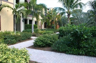 Walking path to the townhouse
