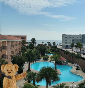Penthouse with Gulf & Pool Views Seawall Blvd - Beautiful Deck/Family Friendly!