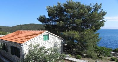 Photo for Holiday house Maslinica for 1 - 5 persons - Holiday home