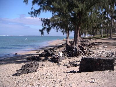 Photo for Charming studio 100m beach protected by a lagoon (no shark), Rsd calm