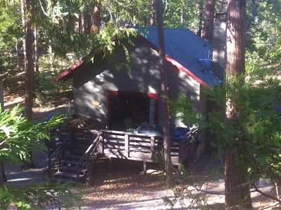 Photo for Cozy cabin in the woods - Close to the arts/music & village,  Pet friendly, Wifi