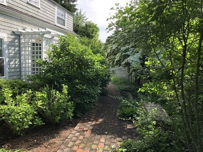 Welcome to our charming cottage -  Cape hydrangeas escort you to our front door!