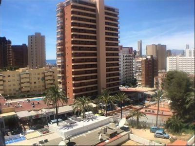 Photo for Rincon Sol Apartment 350 meters from the sea