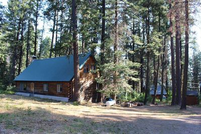 Back exterior of wooden cabin surrounded by pine trees