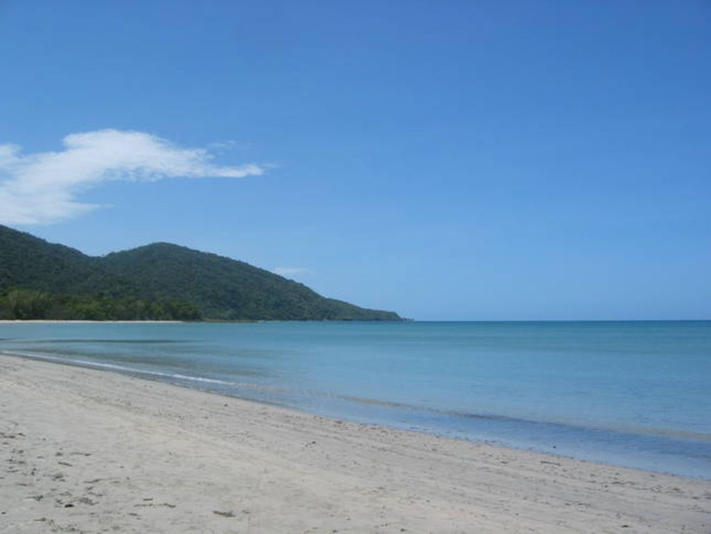 Wait A While Daintree