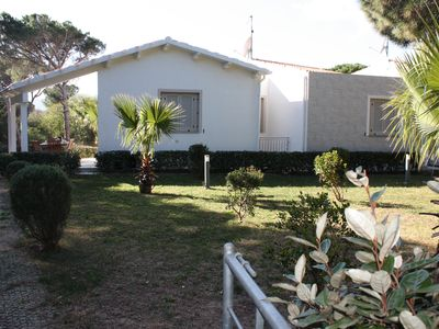 Photo for Villa Elicriso in the green of the splendid pine forest of S. Pietro 100 meters from the sea