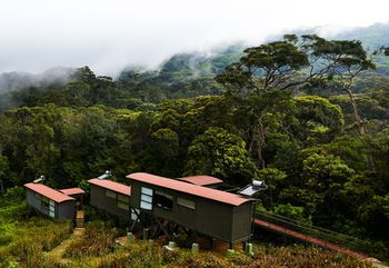 Photo for The Rainforest Ecolodge