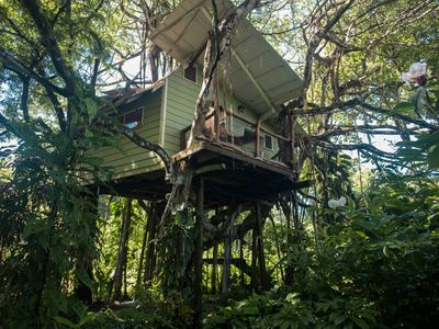 Photo for A Romantic Vacation in a Tree House 3 Min. to Beach in Mal Pais!