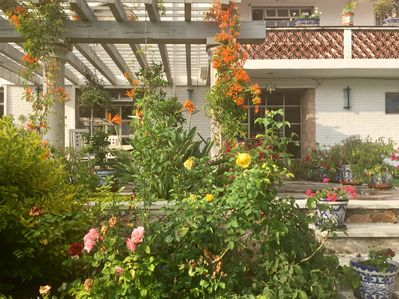 Pergolas and flowers to enchant you.  Huge garden and multiple terraces w views