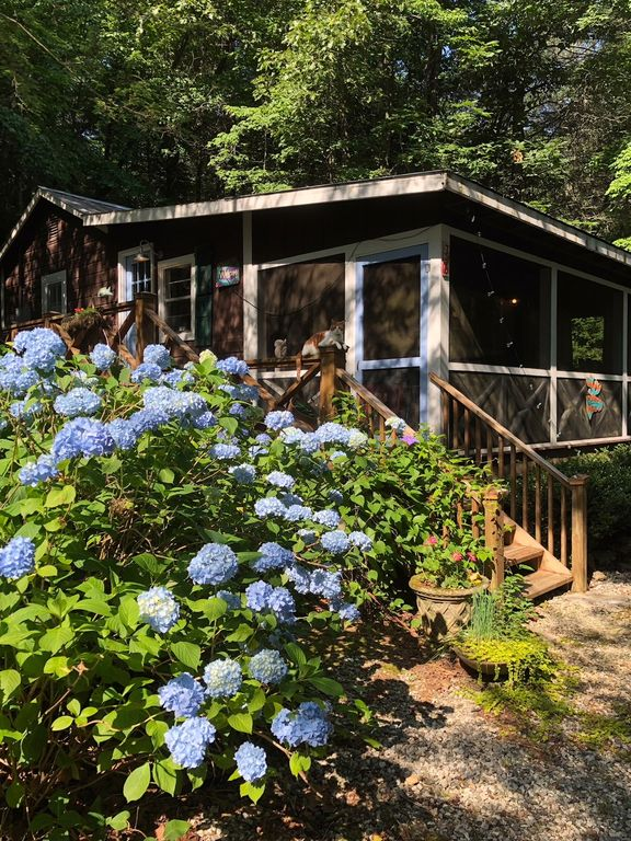 Family Friendly Charm Amp Just Off Of Lake Bu Homeaway