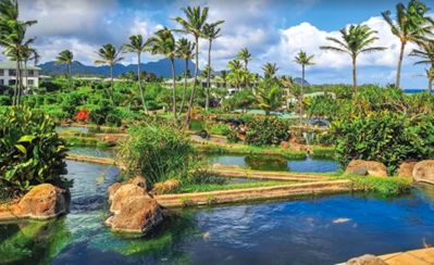 Photo for Point at Poipu 2 Bedroom Condo-Vacation in Paradise!