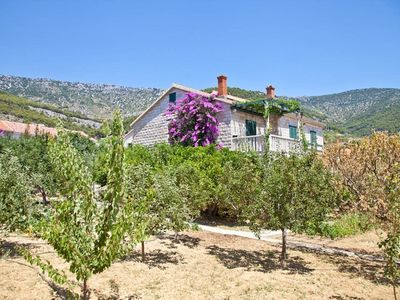 Photo for Apartments Damir, (8167), Bol, island of Brac, Croatia