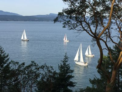 Stunning views of the Sail Boats from the kitchen, both living rooms and more