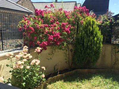 Photo for Apartment with private garden