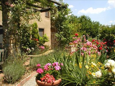 Photo for Hidden B&B in the Rolling Hills of Lucca, Tuscany