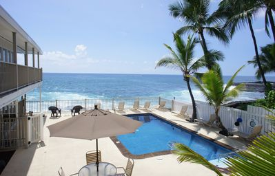 Photo for Premier Ocean Front Complex | Affordable |  Starting at $105/Nt