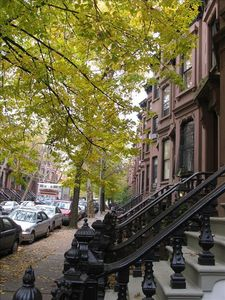 Photo for Great Place to Stay in Park Slope