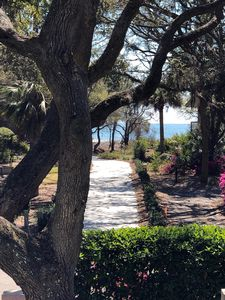 Photo for Sea Pines-2nd Row, 6 Bdrm, Ocean View Home