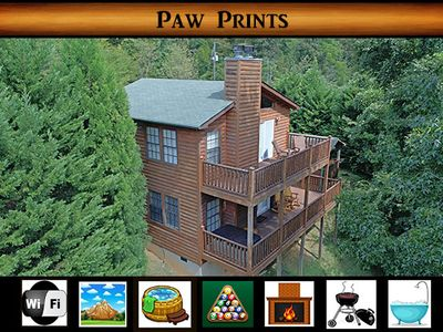 Photo for Paw Prints