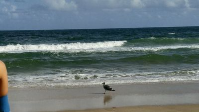 Photo for DIRECTLY ON THE BEACH 2 BEDROOMS AND 2 FULL BATHROOMS WITH INTERCOASTAL VIEWS