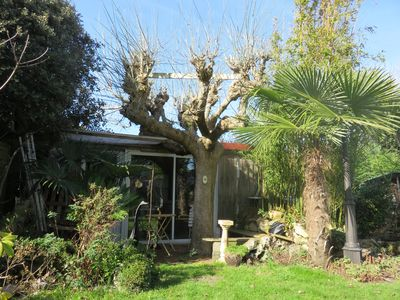 Photo for Charming cabin near port and center of La Teste de Buch - 2 persons