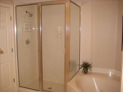 Large shower and jetted tub in Master bedroom