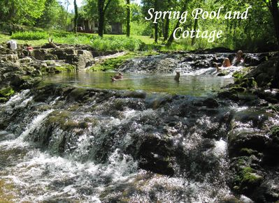 Refresh in our Spring Pool