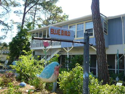 Photo for Beautiful Views & Scenic Sunsets at The Bluebird on Tybee Island